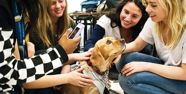 Students pet a pooch at Ryerson's inaugural dog therapy event.