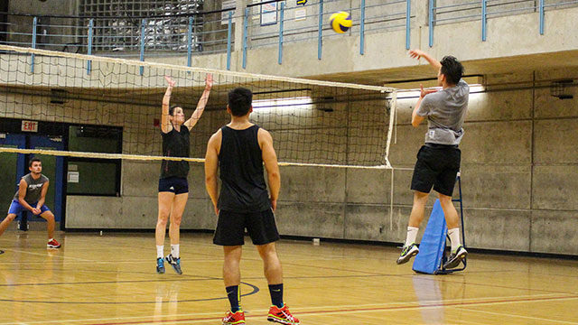 Students participating in an intramural volleyball game at the Ryerson Athletics Centre. Credit: Tristan Simpson