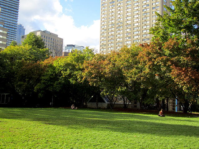 Students relax under the changing leaves in the Kerr Hall Quad. (Laura Lehman/Ryersonian Staff)