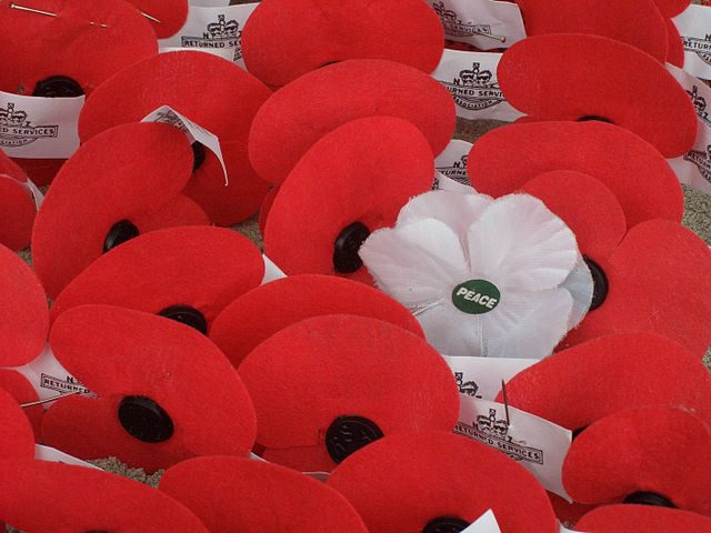 Why I wore the red poppy on Remembrance Day
