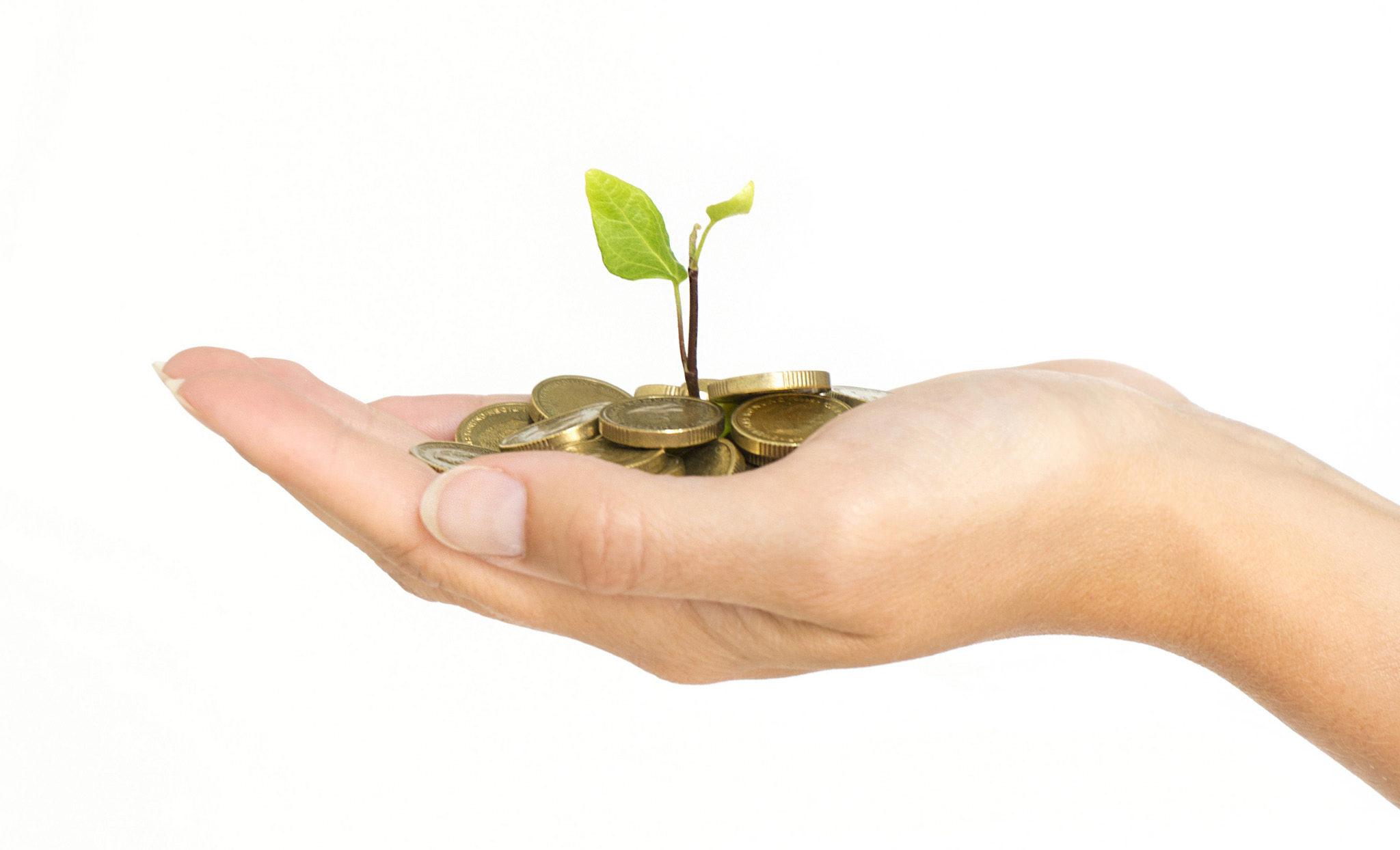 InvestingStrategies-Ali