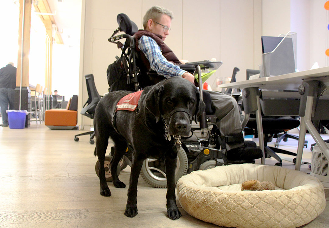 Tim Rose, Diversity Project Lead, working with his service dog.(Lindsay Sganga/Ryersonian Staff)
