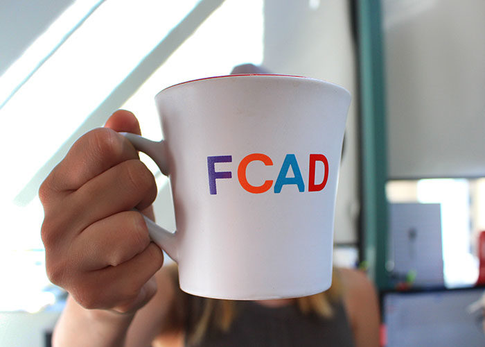 FCAD mental health pilot program faces delay